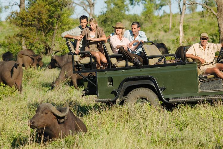 Safari in Tanzania si sejur in Zanzibar